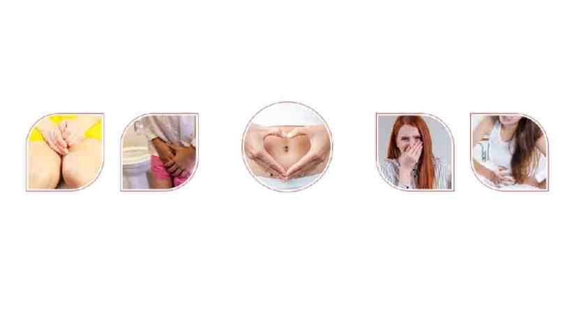 Sweet Lotus Probiotics benefits