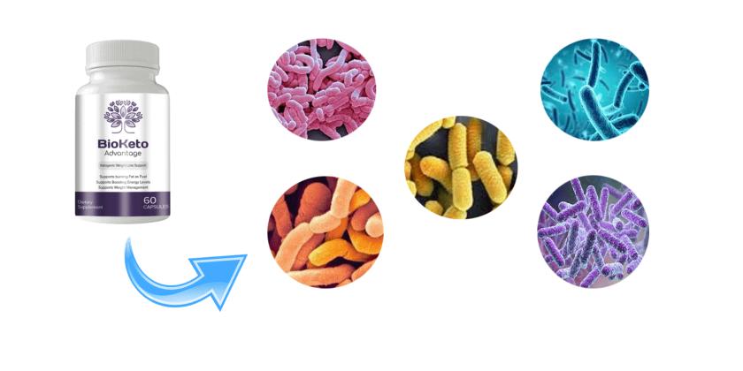BioKeto Advantage SupplementIngredients