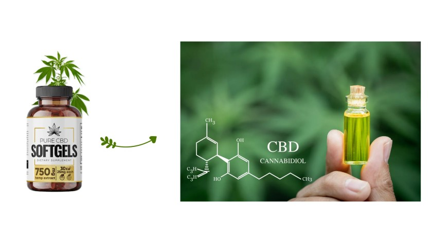 Pure CBD SoftGels Ingredients