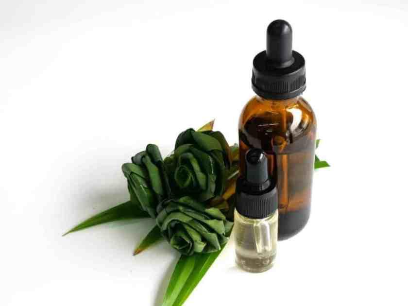 UNBS Tropical CBD Gummies Ingredient