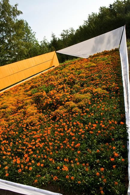 "Press kit   837-10 - Press release   The 16th International Garden Festival at Les Jardins de Métis / Reford Gardens will BUZZ in 2015! - International Garden Festival / Reford Gardens - Landscape Architecture -   <p style="""">        </p>SECRET ORANGE<p style=""""> </p>by Nomad Studio [William E. Roberts, Laura Santin]<br> New York, United States<br>   - Photo credit: Marjelaine Sylvestre"