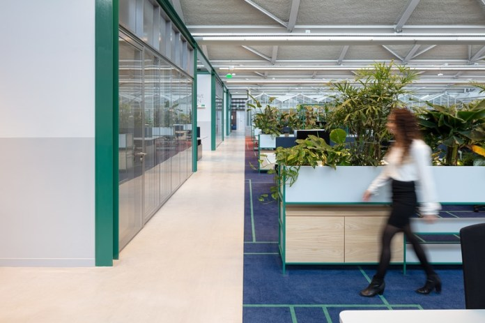 Press kit   4695-01 - Press release   Sustainable transformed office The Core wins two Frame Awards - Large Office of the Year - CBRE Netherlands - Commercial Interior Design - Workspace with break out spaces on the left and on the right workstations separated by lots of green plants. In the back: greenhouse meeting rooms. - Photo credit: Stijnstijl Photography