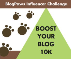 Boost-Your-Blog-10K-Challenge