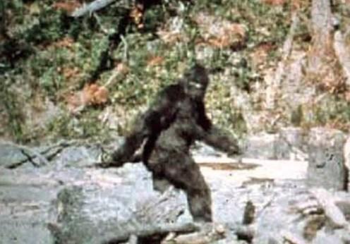Cazul Patterson (1967)