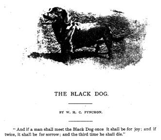 Câinele negru