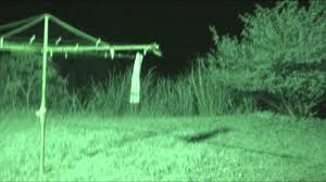 Extraterestru filmat în noapte cu infraroşu