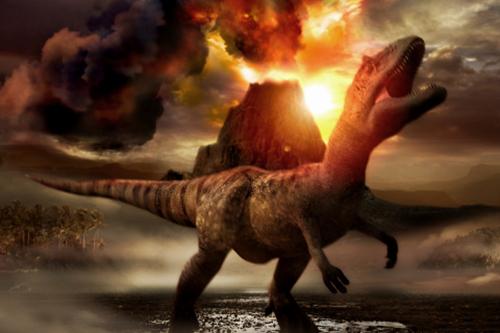 Dispariţia speciilor sau exterminarea lor 2