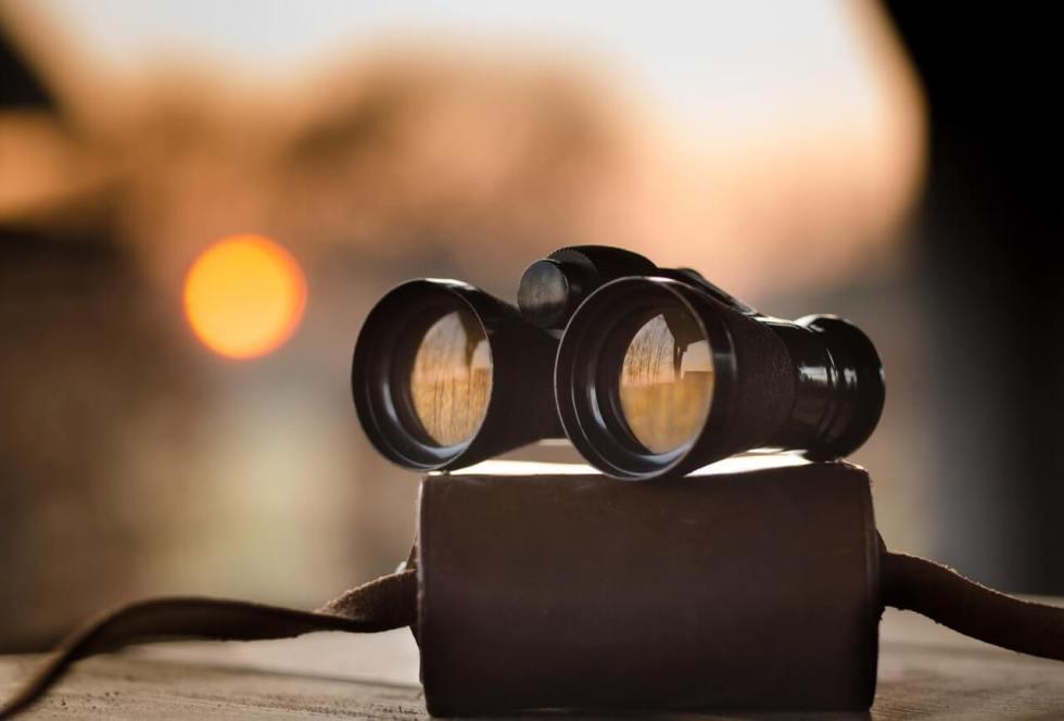 Servicii de agenție de recrutare și selecție, executive search și outplacement