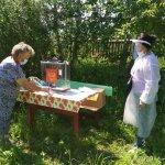 golosovanie_v_rossii_po_poravkam_v_konstitutsiyu_buryatiya_1