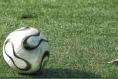 viventura bei der WM 2014