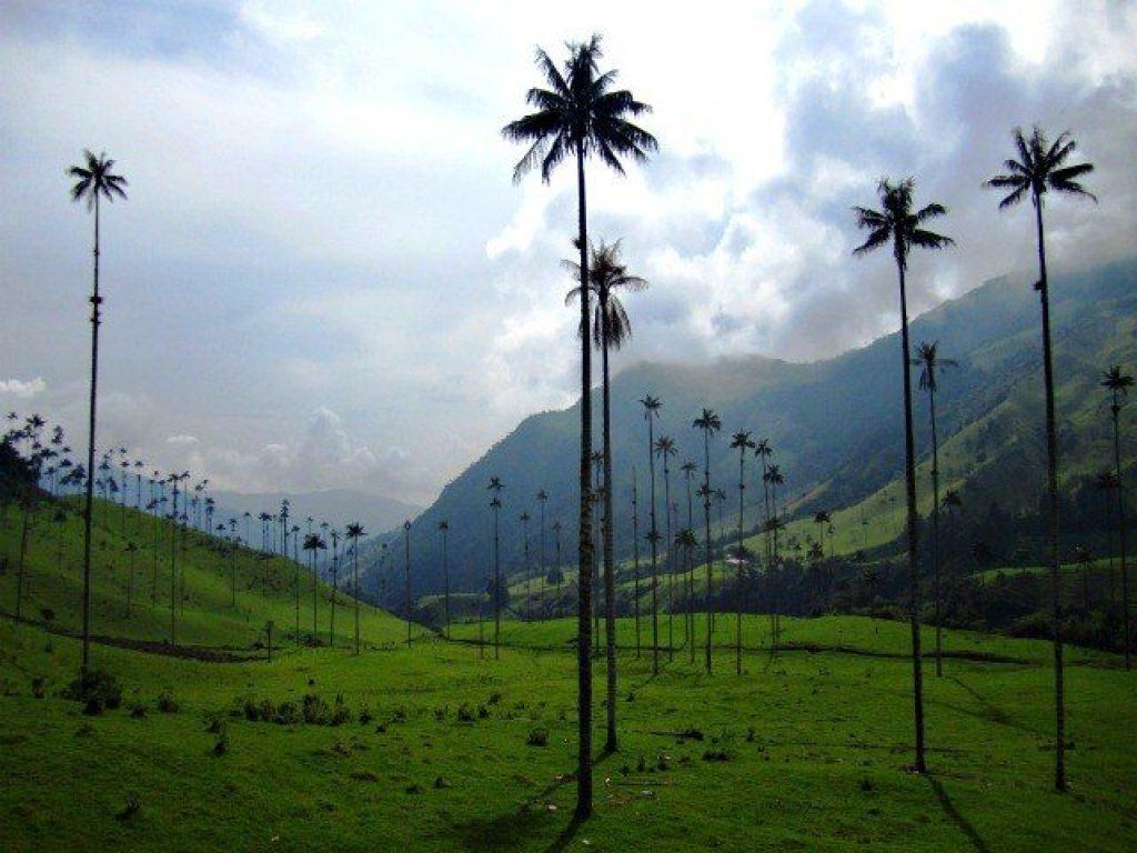 Kolumbien Sehenswürdigkeiten: Das Corora-Tal. Quelle: viventura.