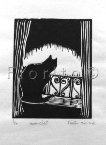Mon chat, 03-2008