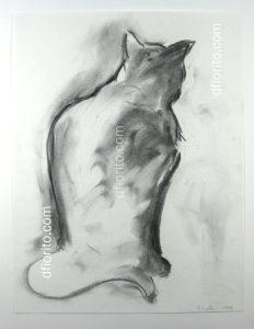 Le chat 1998
