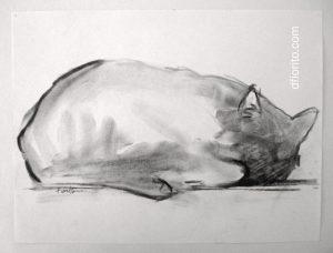 Le chat de la rue Hutchison, 1998