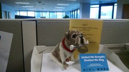 """St. Paul Pioneer Press... """"In dog years, it's been 56 years since we've had a raise!"""""""