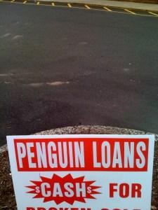 Hey buddy...wanna buy a penguin?