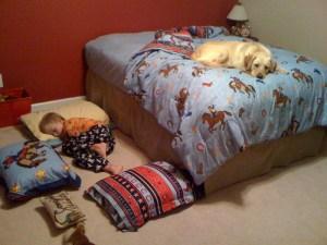 Dog 1, Kid 0.