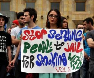 DSC_0024_marijuana_June2_2014_Cropped