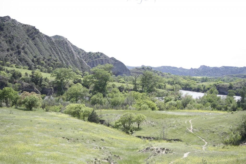 Vashlovani landscape