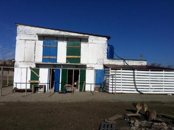 Oasis club in Udabno ( Mustafa Shalan)