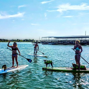 Paddle-with-your-Pooch-at-DFW-Surf