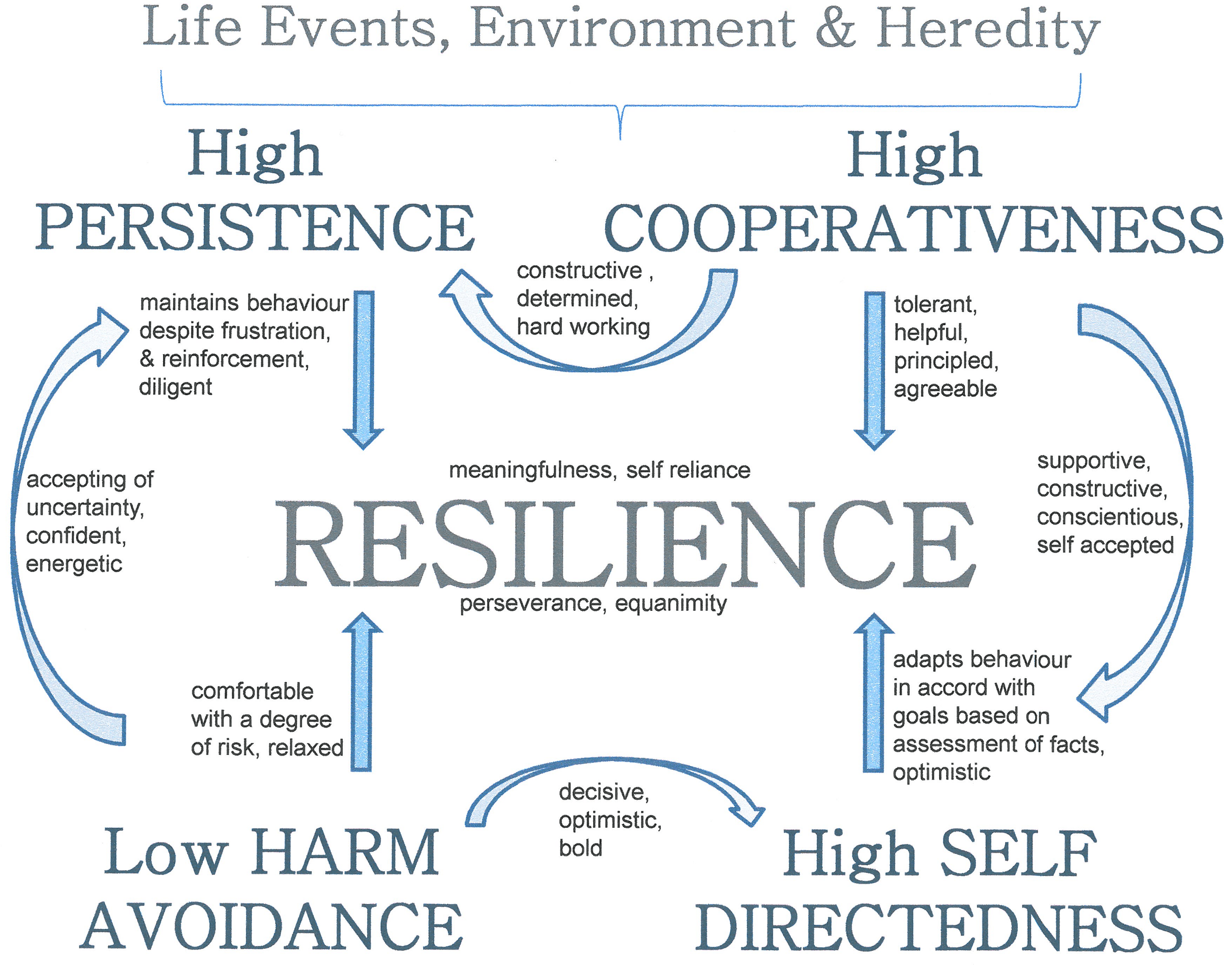 The Relationship Between Resilience And Personality Traits