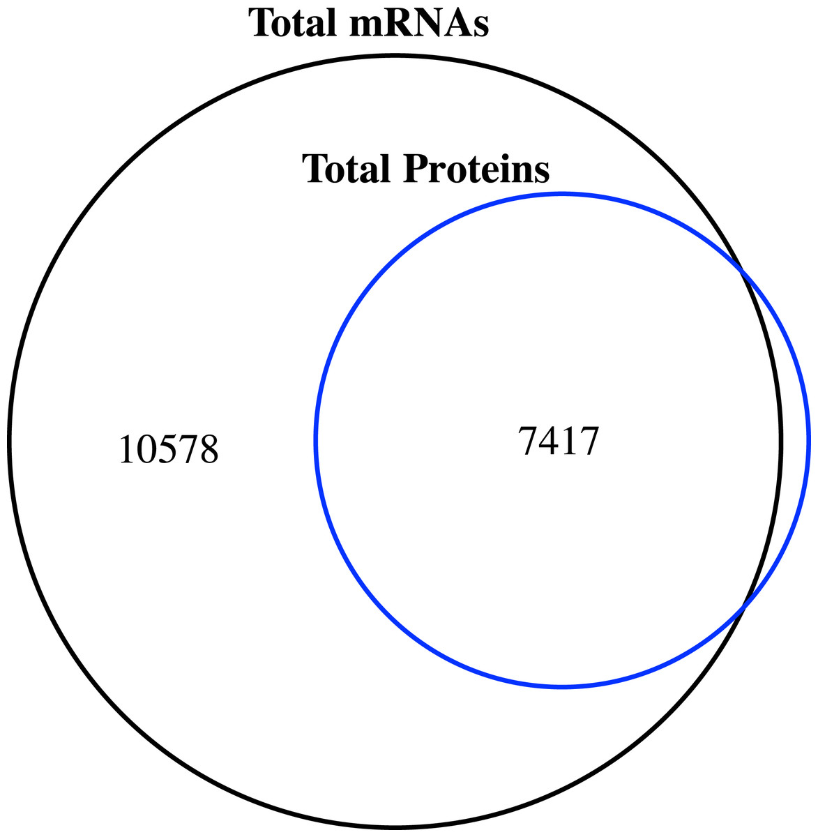 Shot Gun Proteome And Transcriptome Mapping Of The Jujube