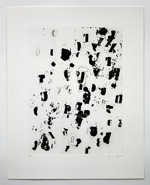 Debris Field II by Glenn Ligon