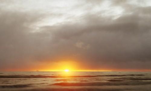 Towards Tomorrow by Marine Hugonnier