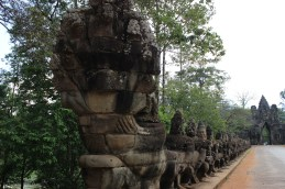 The bridge leading into Angkor Thom is adorned with sculptured images of a cobra being held by dozens of human figures.