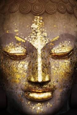 Buddha's face