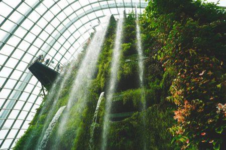 vibrant inner garden d grant smith