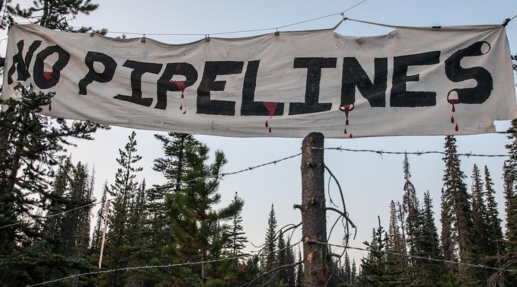 No Pipelines Unist'ot'en DGR Deep Green Resistance delegation