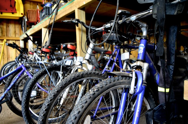 Bikes for summer cycling