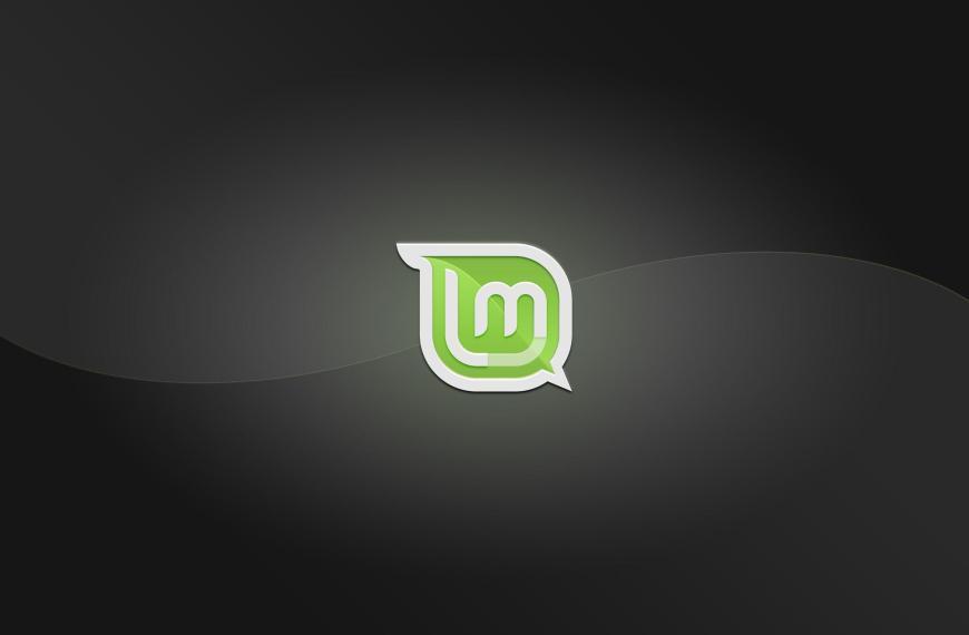 Linux Mint 20 'Ulyana' upgraden: Schritt für Schritt-Anleitung