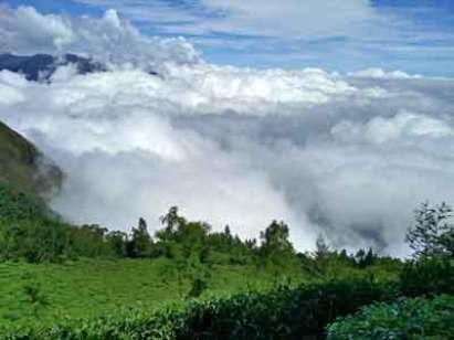 dhakad baate nature photo (15)