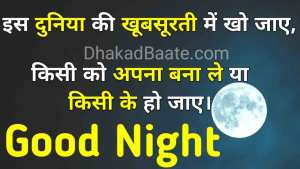 Read more about the article Good Night Hindi Quotes Shayari शुभ रात्रि सुविचार