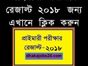 PSC Exam Result 2018 DPE.GOV.BD