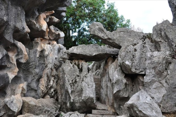 Stone-Forest-China14