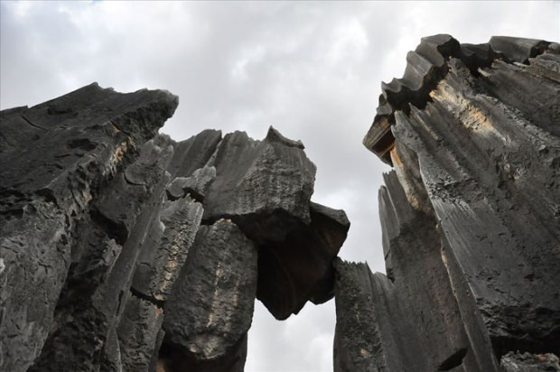 Stone-Forest-China21