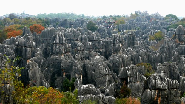 Stone-Forest-China6