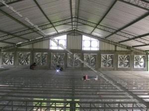 Pilah-Pilih Atap Untuk Kandang Ayam