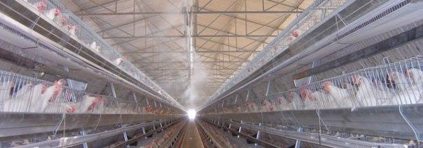 Evaporating Cooling System