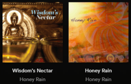 honey rain cds