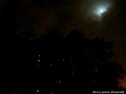 moon night of the dark