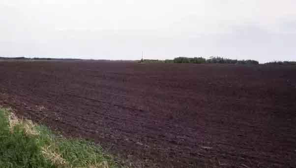 black soil land