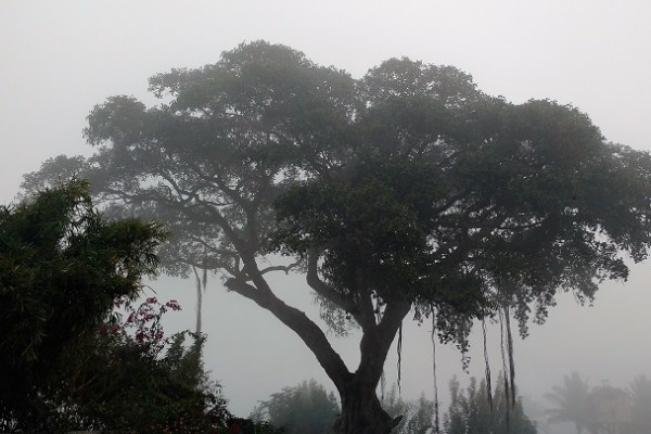 A memorable trek to Nandi Hills