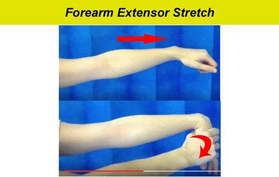 forearm extensor stretch