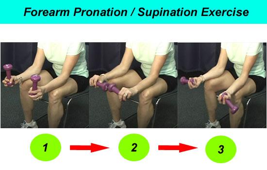 forearm pronation exercise