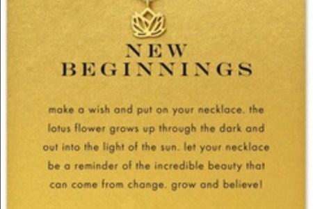 New Beginnings Flower Beautiful Flowers 2019 Beautiful Flowers
